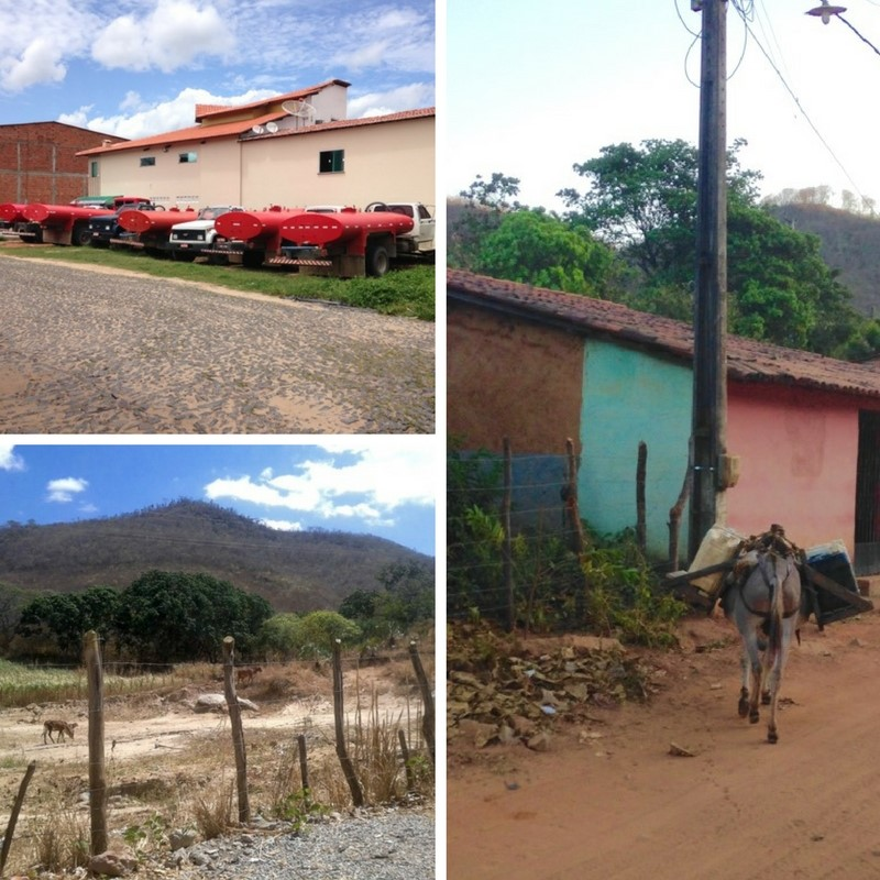 (Un)Natural Disasters: Distributive Politics in Northeast Brazil